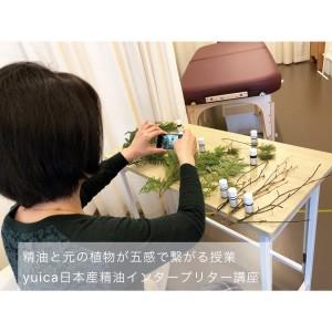 精油と元の植物が五感で繋がるインタープリター講座